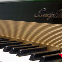 Fender Rhodes 1974 Solid Gold Suitcase 73 6