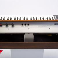 Minimoog Model D 7
